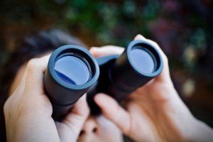 Mejores prismáticos 2021